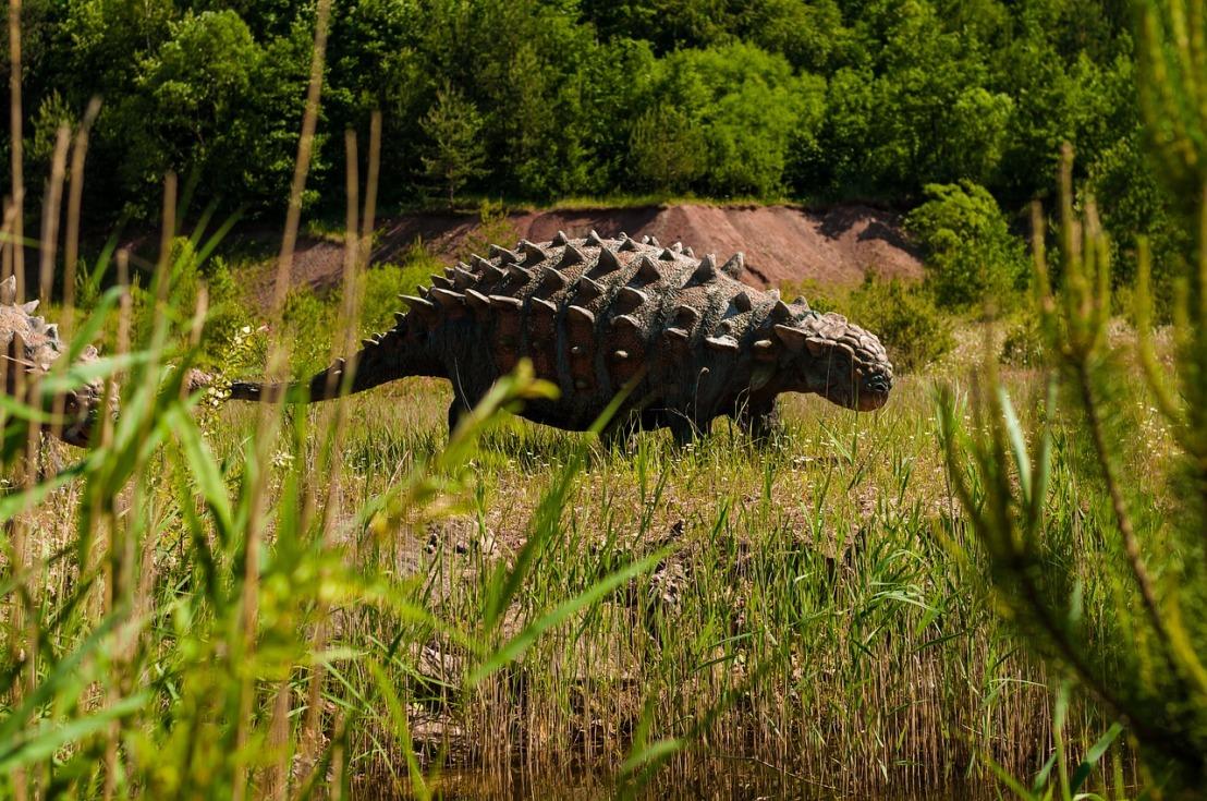 Deconstructing Nodosaur