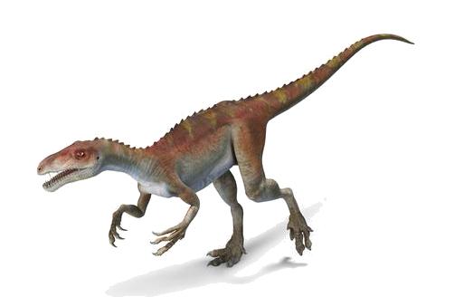 Dinosaur Profile: Eoraptor