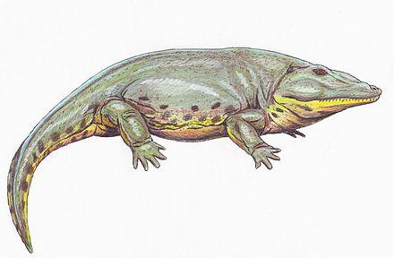 Dinosaur Profile: Eryops