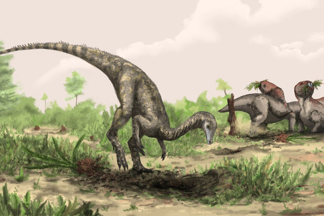 Dinosaur Profile: Nyasasaurus