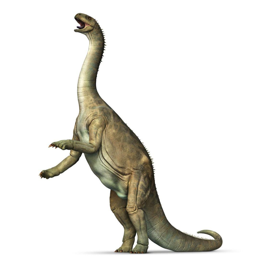 Dinosaur Profile: Isanosaurus