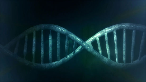 RNA World?