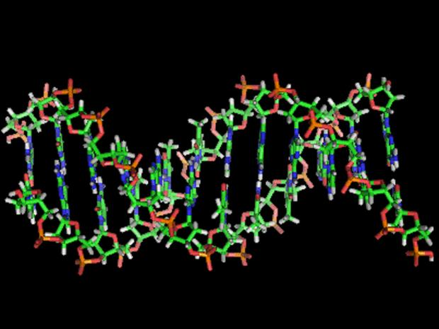 Junk DNA or Junk Science?