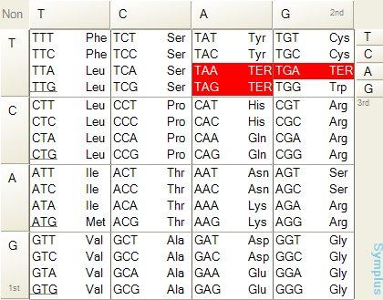 geneticcode01